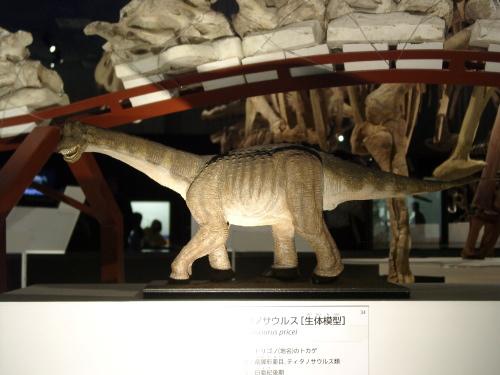 トリゴノサウルス 003