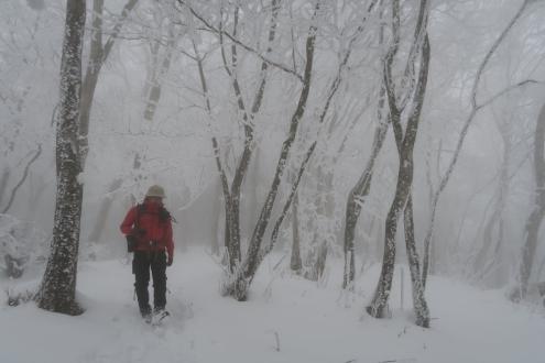 まるで雪山の秩父の山