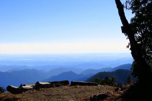 大持山への稜線