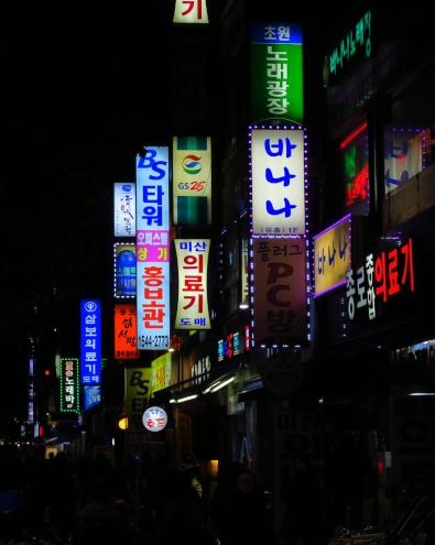 食い倒れ韓国旅行 繫華街