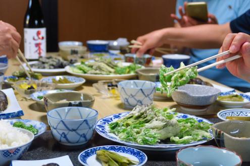 民宿すぎの子の山菜料理