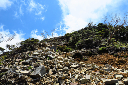 女峰山までの登山道