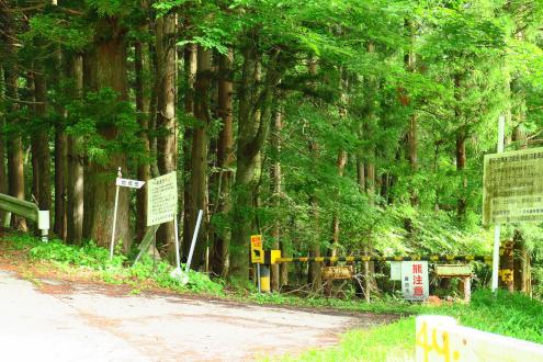 古峯神社からの林道