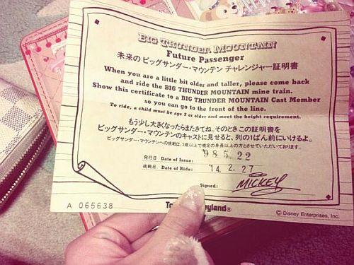 ディズニー身長制限16年前チケット