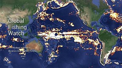 Global Fishing Watch