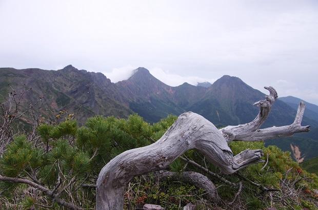 2016.6.19硫黄岳20ブログ.jpg