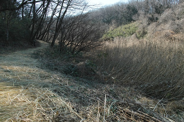 2017.1.22六道山18.jpg