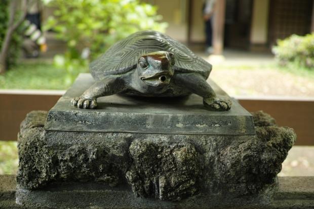 2017.5.14鎌倉14.jpg