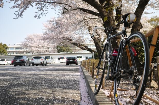 2018.4.1八徳4.jpg