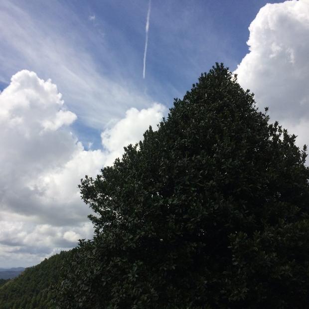 2018.9.8光明山20.jpg