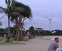琉球大学の永井教授「沖縄の風力発電」