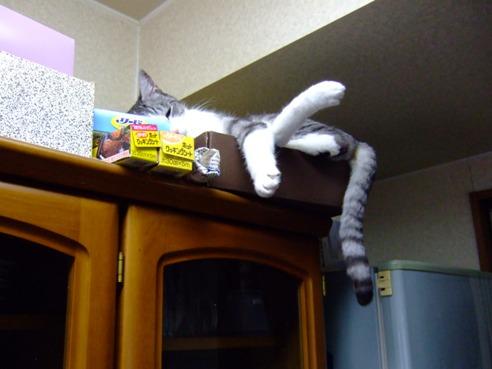 食器棚の空1