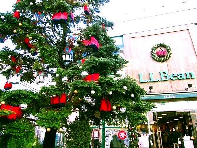 クリスマスツリーのピンチョス【E・レシピ】料理 …