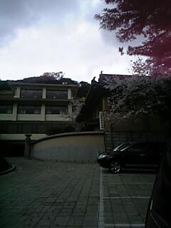 20070403_318944.jpg
