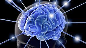 岩波英知脳覚醒技術体験記と脳内麻薬