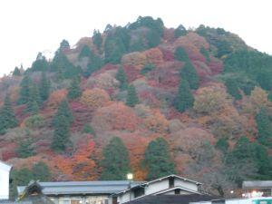 香嵐渓 紅葉の昼間