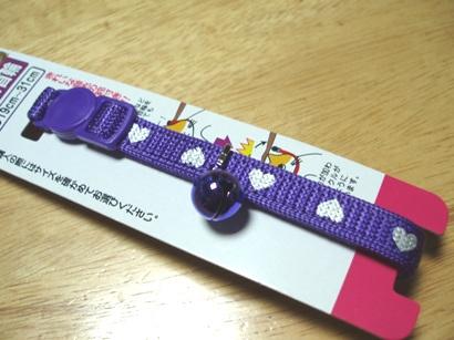 P7220608.JPG