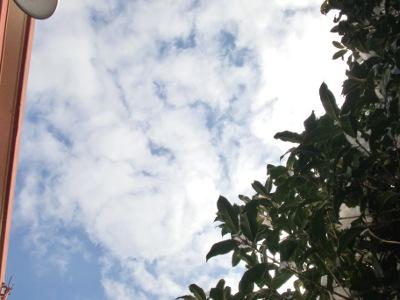 12.01.24雲02