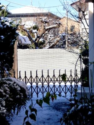 12.01.24雪景色01