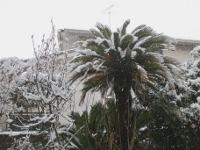 12.02.29雪01