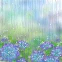 12.03.05雨07