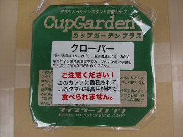 12.04.30カップ・ガーデン01