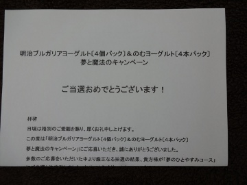 12.05.30ディズニー・カップ01