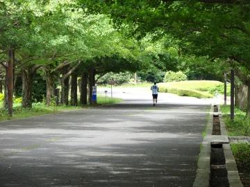 12.07.15立川昭和記念公園12
