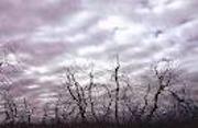 12.09.18層積雲14