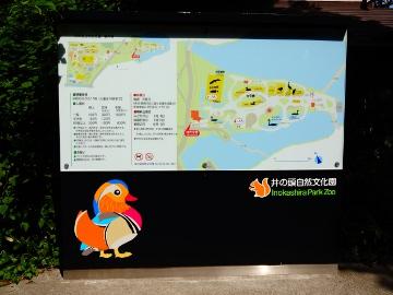 12.10.08井の頭公園62