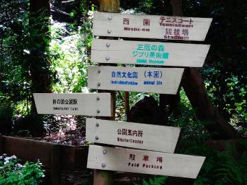12.10.08井の頭公園67