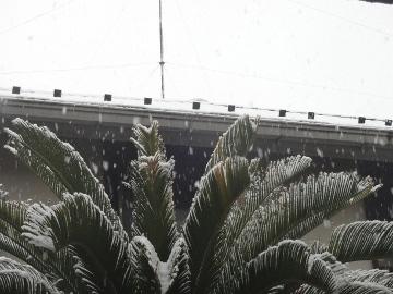 13.01.14初雪02