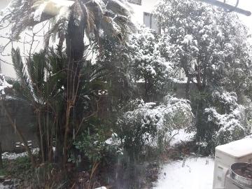 13.01.14初雪04