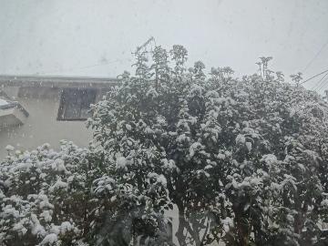 13.01.14初雪05