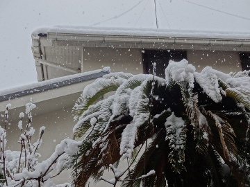 13.01.14初雪08