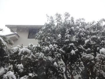 13.01.14初雪09