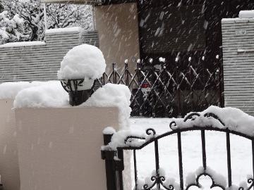 13.01.14初雪11