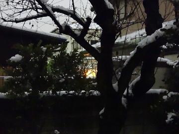 13.01.14初雪14