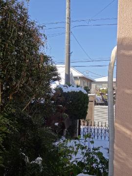 13.01.15雪の後01