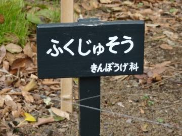 13.03.10撮影会21