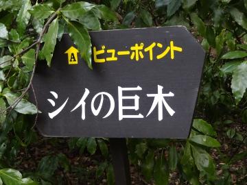 13.03.10撮影会49
