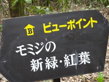 13.03.10撮影会50
