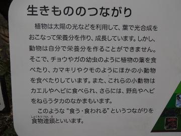 13.03.10撮影会81