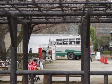 13.03.26小金井公園10