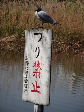 13.04.12撮影会03