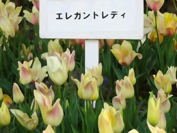 13.04.12撮影会118