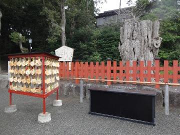 13.10.24鎌倉13