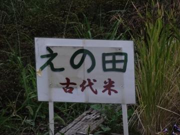 13.10.24鎌倉44