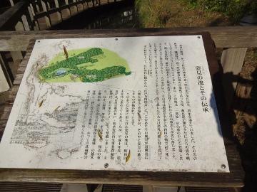 13.10.27野川08