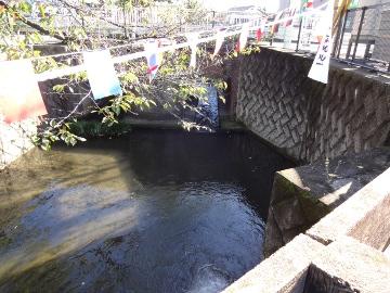 13.10.27野川36